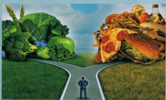 Alimentação caminhos